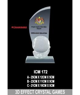 3D _ ICM172