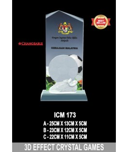 3D _ ICM173