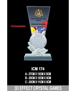 3D _ ICM174
